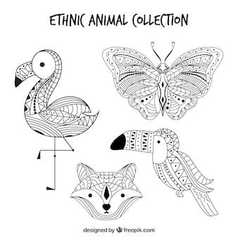 Verpakking schetsen van etnische dieren