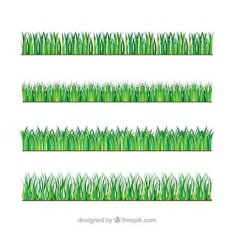 Verscheidenheid van gras grenzen in groene tinten