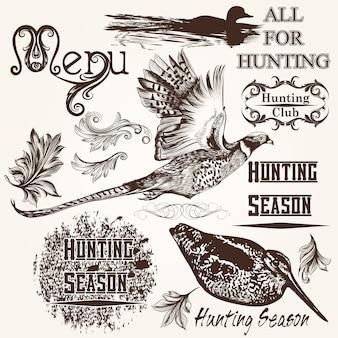 Verzameling van vogels en met de hand getekende ornamenten