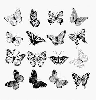 Vlinders silhouetten illustratie set