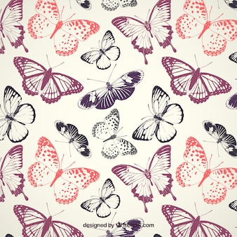 Vlinderspatroon