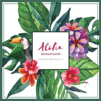 Watercolor aloha achtergrond met tucano