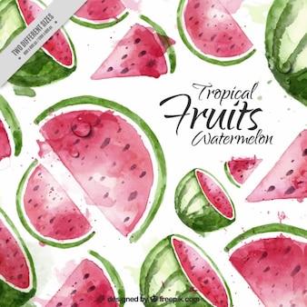Watercolor watermeloen achtergrond