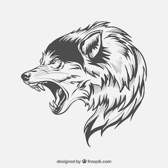 Wolf zij-gezicht