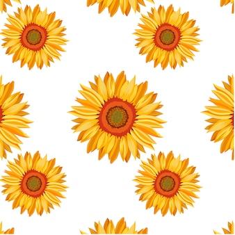Zonnebloem patroon achtergrond