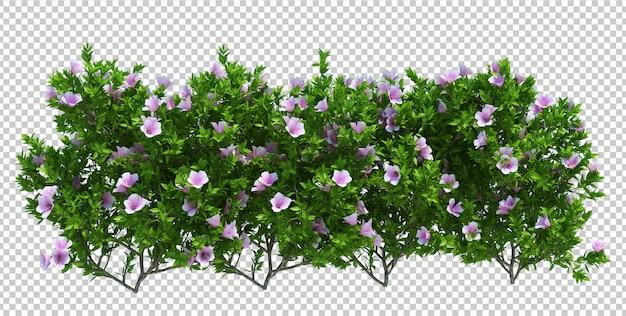 3d odpłacają się szczotkarskiego drzewa odizolowywającego na bielu