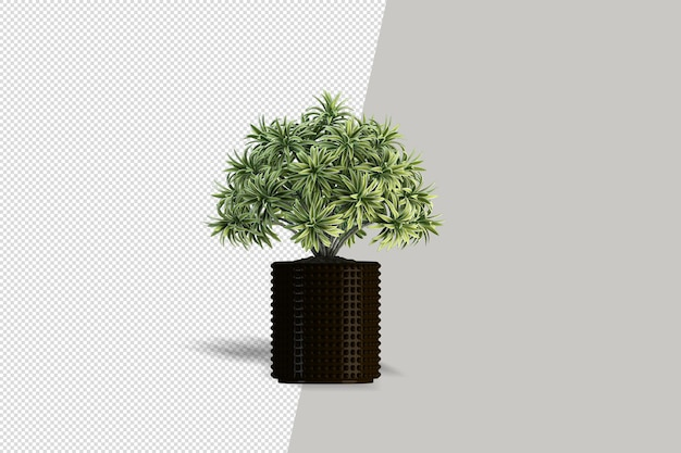 3d render drzewo pędzla na białym tle