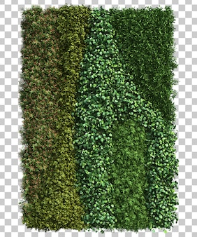 3d rendering vertical ogród