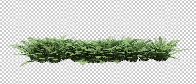 3d renderowania drzewa pędzla na białym tle