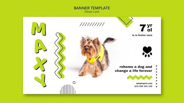 Baner z projektu adopcji zwierzaka