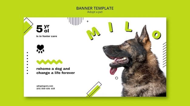 Baner z szablonu adopcji zwierzaka
