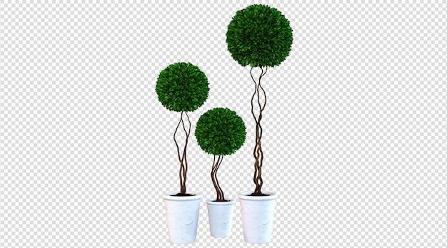 Białe rośliny doniczkowe renderowania 3d
