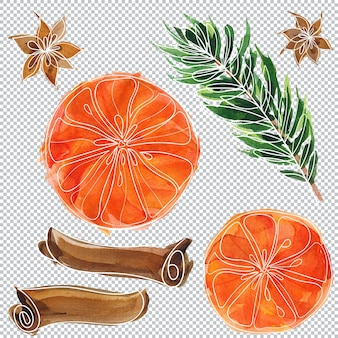 Boże narodzenie i nowy rok kwiatowy elementy akwareli, warstwowa ilustracja