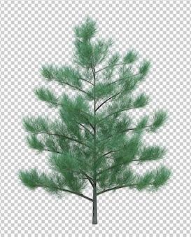 Drzewo obiektu przyrody na białym tle