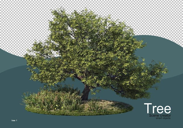 Duże drzewo na środku pola