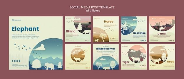 Dzikie zwierzęta w przyrodzie post w mediach społecznościowych