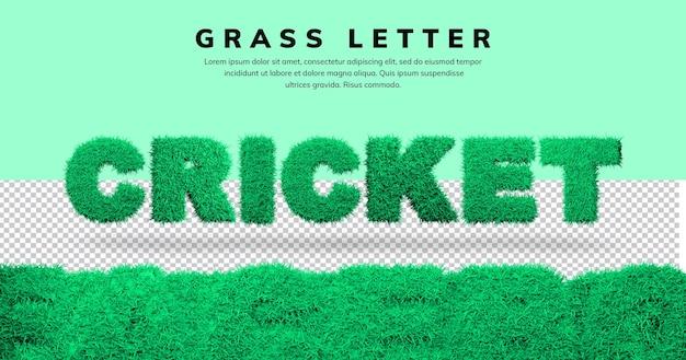Efekt tekstowy krykieta z motywem litery 3d trawy