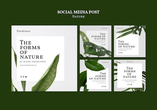 Formy natury kolekcji postów w mediach społecznościowych