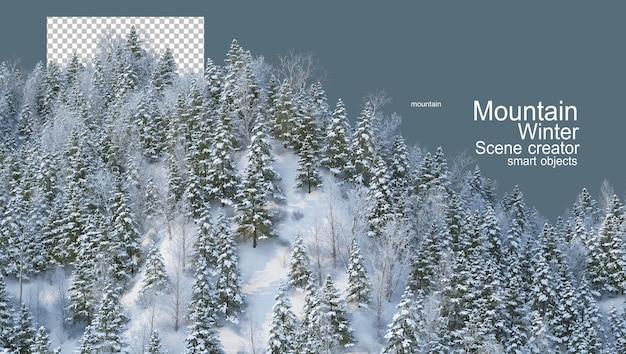 Góry z sosnami zimą