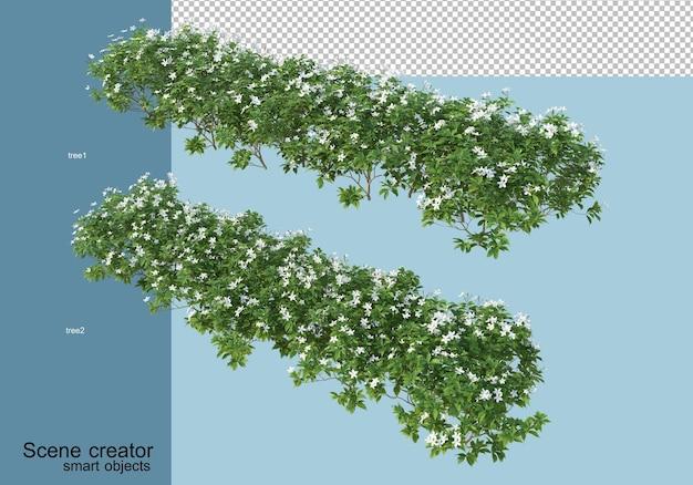 Grafika trójwymiarowa rozmieszczenia drzew i kwiatów