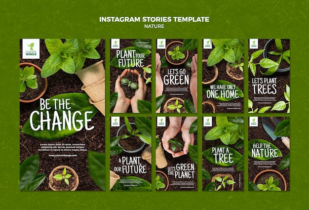 Historie na instagramie o uprawie roślin