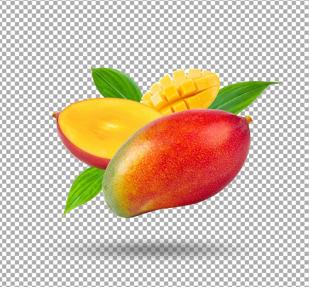 Ilustracja owoce mango na białym tle