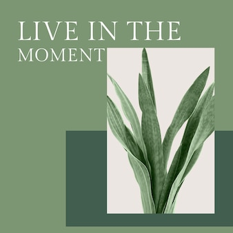 Inspirujący cytat botaniczny szablon psd ze srebrnym postem w mediach społecznościowych
