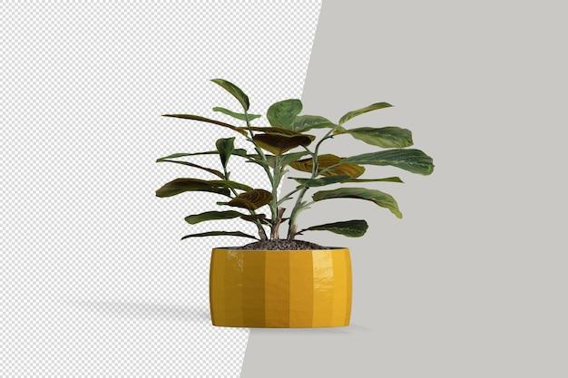 Izometryczna roślina w renderowaniu 3d w doniczce