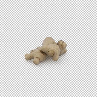Izometryczny korzeń imbiru