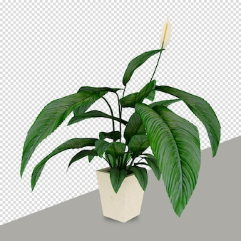 Izometryczny roślina w renderowaniu 3d na białym tle