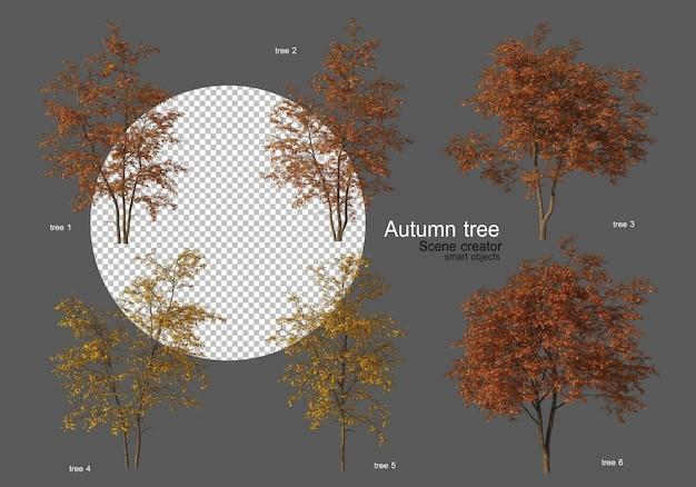 Jesienne drzewa różne rodzaje wiele kształtów