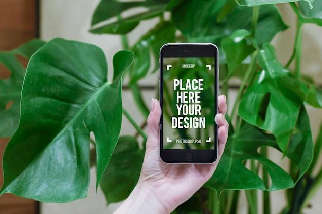 Kobiety ręka trzyma nowożytnego smartphone frontowej rośliny