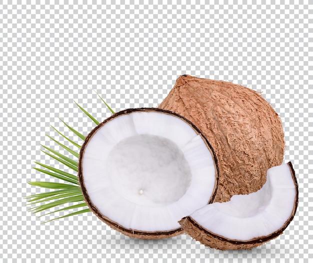Kokos z liśćmi na białym tle