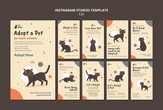 Kolekcja opowiadań na instagramie do adopcji kotów