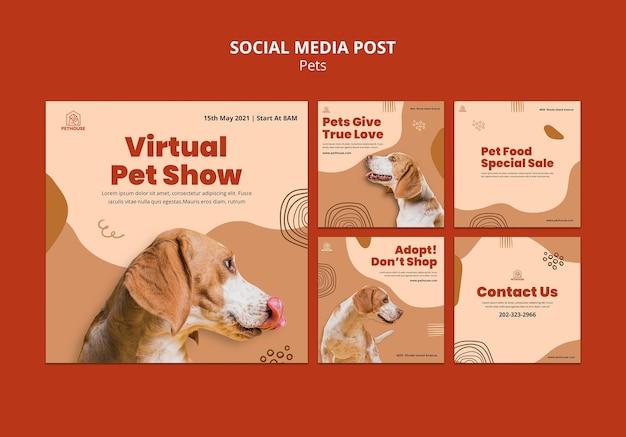 Kolekcja postów na instagramie dla zwierząt domowych z uroczym psem