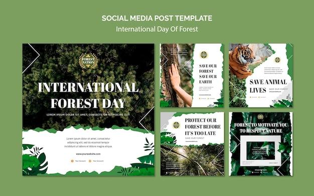 Kolekcja postów na instagramie na dzień lasu z naturą