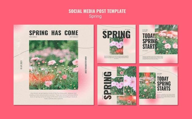 Kolekcja postów na instagramie na wiosnę z kwiatami