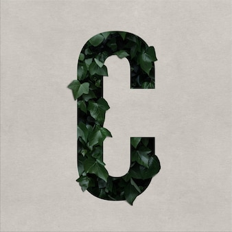 Koncepcja alfabetu litery c z hederą