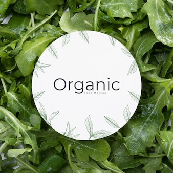 Koncepcja organicznych liści widok z góry