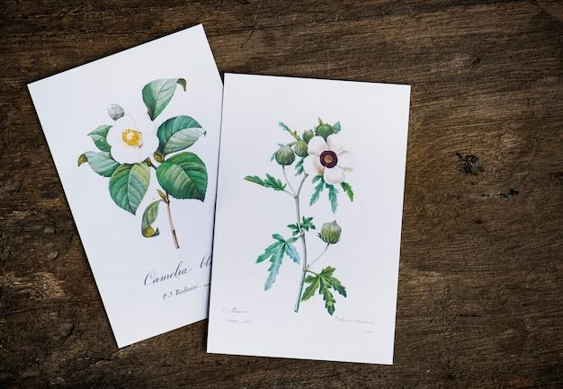 Kwiatowe zaprojektowane kartki z życzeniami