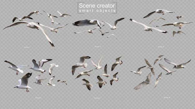 Latające ptaki ustawiają twórcę sceny na białym tle