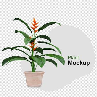 Makieta 3d renderowanej rośliny w doniczkach