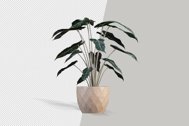 Makieta roślin izolowanych zasobów