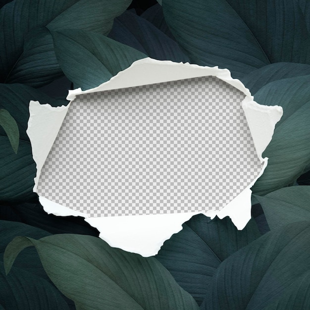 Makieta rozdartego papieru na liściastym tle