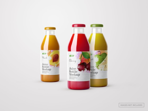 Makiety butelek soków