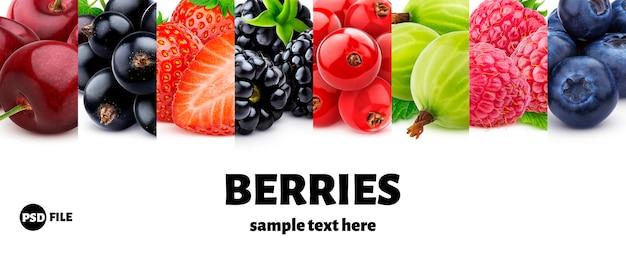 Makro kolekcji jagód