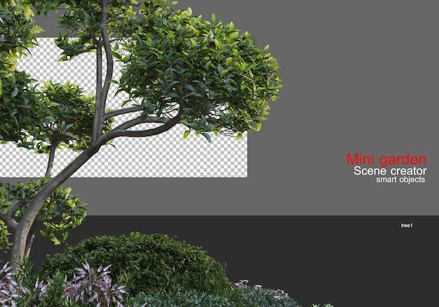 Mały ogród z dużą różnorodnością drzew