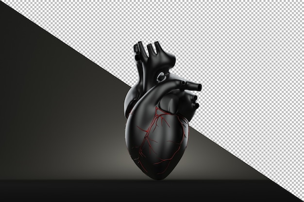 Martwa natura ludzkie serce na czarnym tle