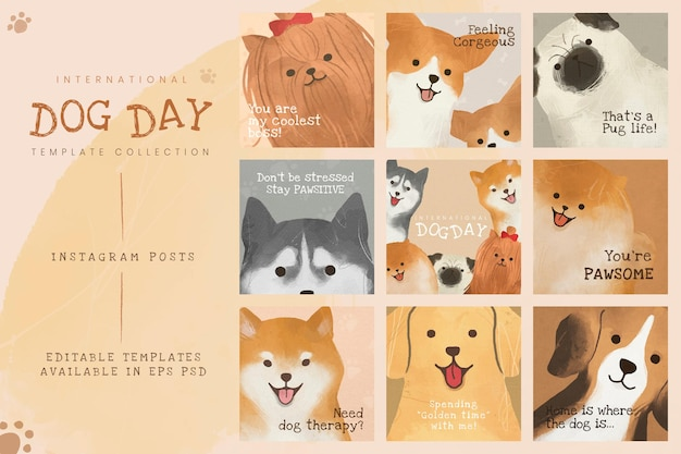 Międzynarodowy szablon dnia psa psd zestaw postów w mediach społecznościowych