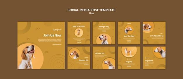 Miłośnicy psów posty w mediach społecznościowych